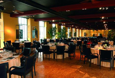 Dannemann Centre, Brissago, Switzerland | Centro Dannemann, Brissago | Scoop.it