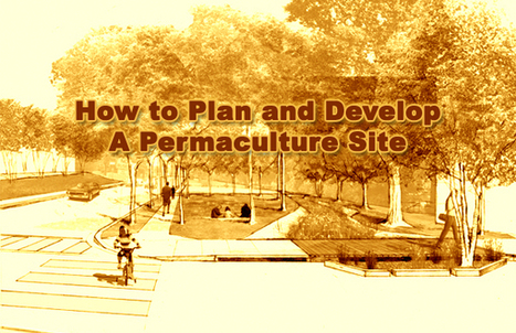 Permaculture Tip of the Day - How to Plan and Develop a Permaculture Site - School of Permaculture | Water is the Way! | Scoop.it