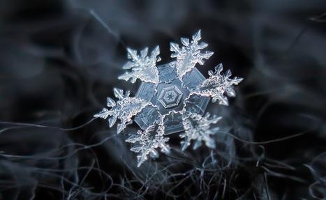 Amazing Macro-Photography of Individual Snowflakes   stuff   Scoop.it
