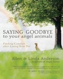 Coping with Pet Loss – Saying Goodbye to your Angel Animals.
