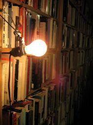 Le libraire féministe True Colors sur le point de fermer ses portes | BiblioLivre | Scoop.it