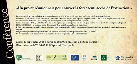 Conférence : Un projet réunionnais pour sauver la forêt semi-sèche de l'extinction | Le tourisme culturel | Scoop.it