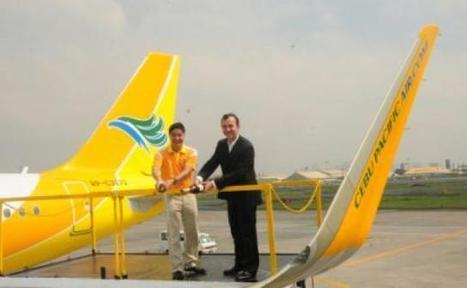 Cebu Pacific Air ne transportera plus d'ailerons de requins | Requins | Scoop.it