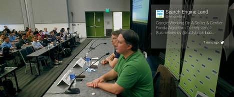 Google travaille sur un Panda light pour les petites entreprises - Actualité Abondance   SEO   Scoop.it