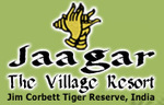 Jim Corbett National Park Packages || Wildlife Holiday | Wildlife Holiday | Scoop.it