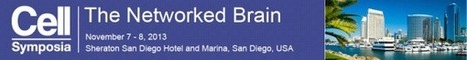 Cell Symposia: The Networked Brain   Events   Scoop.it