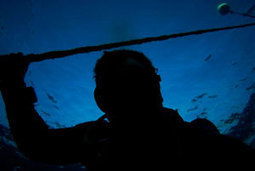 Does It Have to be Night for Low Visibility Dives? @SDITDIERDI | scubadiving | Scoop.it