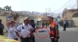 #Watch IOF ordered him to get closer, then they shot him dead, eyewitnesses | Palestinian Editor | Palestine | Scoop.it