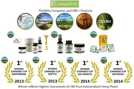 #CBD   #plusCBD   #ScottSalisbury  We are constantly asked what is the best… | CBD | Scoop.it