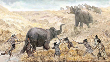 Humans Hunted Mastodon in Florida Nearly 15,000 Years Ago   INTRODUCTION TO THE SOCIAL SCIENCES DIGITAL TEXTBOOK(PSYCHOLOGY-ECONOMICS-SOCIOLOGY):MIKE BUSARELLO   Scoop.it