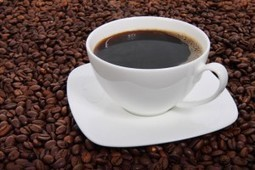Coffee Facts & Myths: 20 Interesting Facts About Coffee (is it affecting your breasts?) | Health, Nutrition & Fitness | Scoop.it