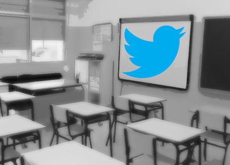 Cómo darle a Twitter una utilidad académica   Annette   Scoop.it