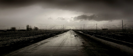 The official website of Nuri Bilge Ceylan photography | Fotógrafos na minha rede | Scoop.it