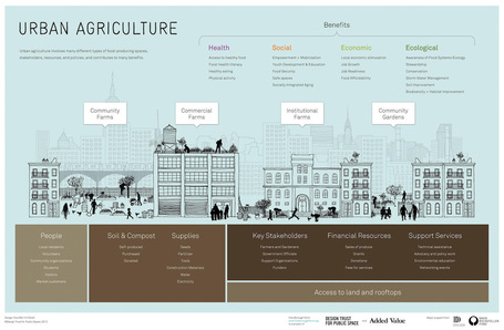 Data Farming: Demonstrating the Benefits of Urban Agriculture [INFOGRAPHIC] | Sustain Our Earth | Scoop.it
