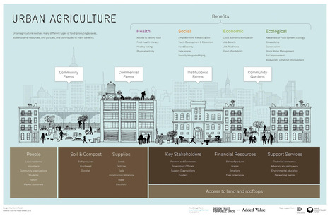 Data Farming: Demonstrating the Benefits of Urban Agriculture [INFOGRAPHIC] | green streets | Scoop.it