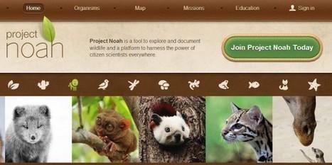 Project Noah, para que tus alumnos aprendan a observar la naturaleza.- | Bichos en Clase | Scoop.it