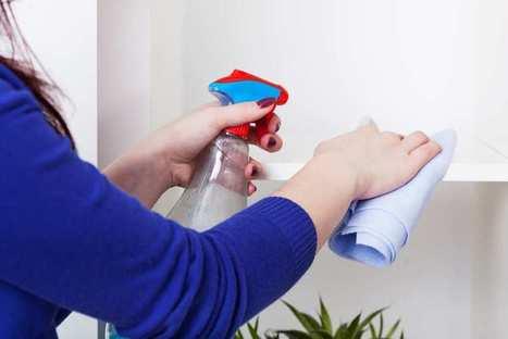 Helpling, le futur Über de l'aide ménagère ?   Nouvelles technologies et innovations dans les services à la personne   Scoop.it