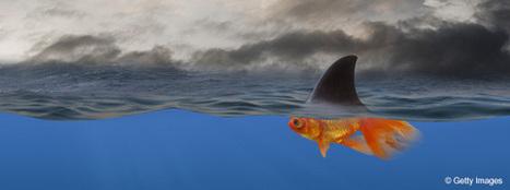 Et vous, avez-vous pensé au risque de sous-traitance ? | Crises & Transformations | Scoop.it