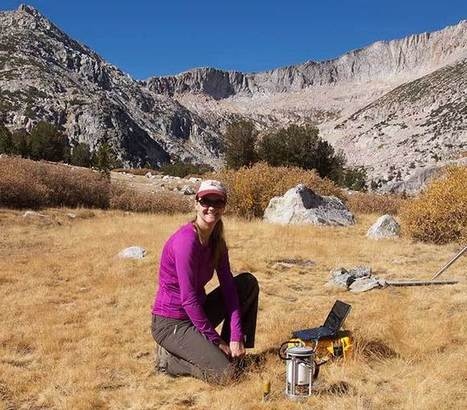 Drying Sierra meadows could worsen California drought   Sustain Our Earth   Scoop.it