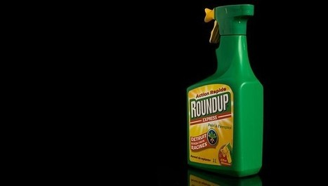#FF #WHO #Cancer Expert: #Glyphosate is Definitely Genotoxic #Monsanto #gentech | Messenger for mother Earth | Scoop.it
