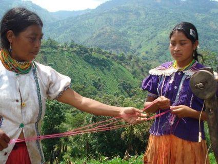Jóvenes indígenas ayudan a proteger sus raíces   Puntos de referencia   Scoop.it