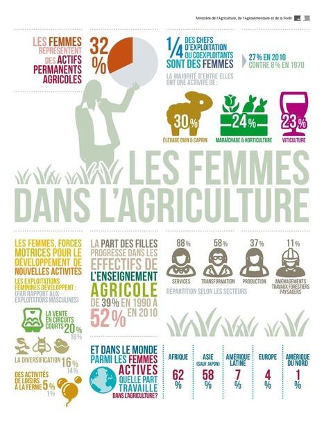 Infographie - Les femmes dans l'agriculture   Alim'agri   Mixité et Diversité   Scoop.it