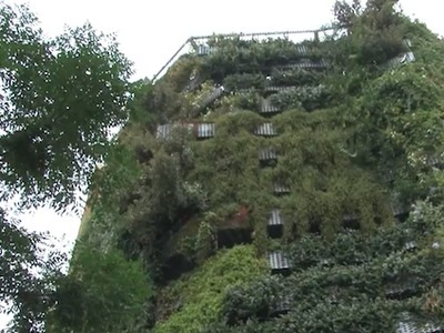 A Vertical Garden That Actually Lives Up To The Term | Malaysian Youth Scene | Scoop.it