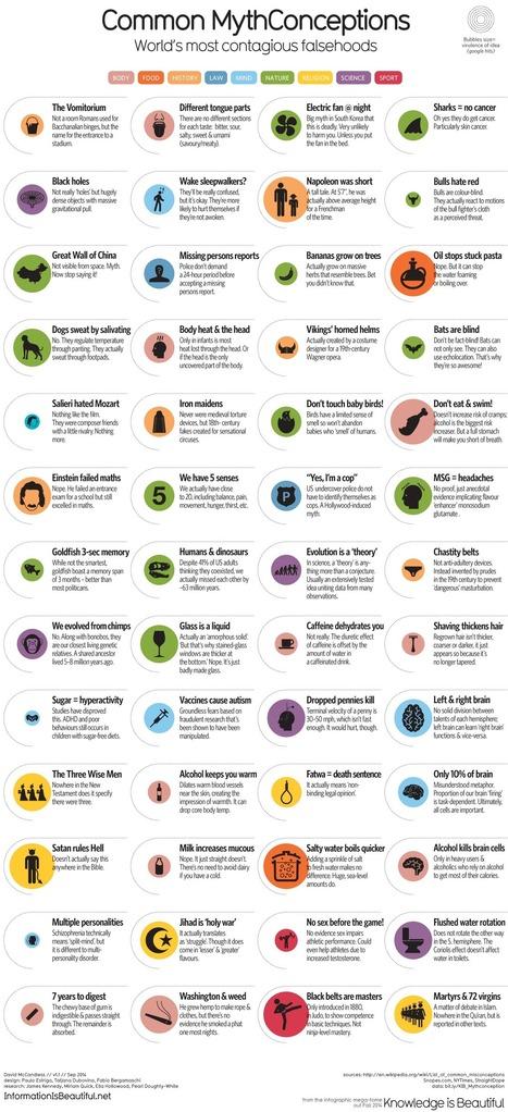 52 vaak voorkomende mythes doorprikt in 1 infografiek | Onderwijs en ICT | Scoop.it