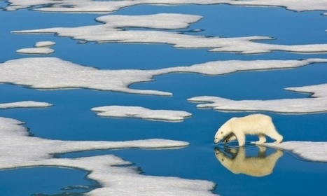 Arctic ice melting faster and earlier as scientists demand action | Peer2Politics | Scoop.it