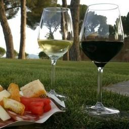 Only Wine Festival, partire dal vino per arrivare al turismo | Vivere Turismo | Vivere Turismo | Scoop.it