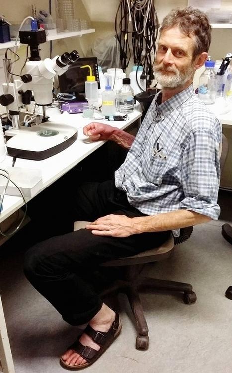 [Portrait] Georges Lutfalla, le biologiste qui aime quand les systèmes fonctionnent | Enseignement Supérieur et Recherche en France | Scoop.it