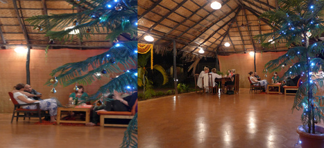 Christmas New Year Yoga Retreat in Goa India | Yoga In Goa India | Swan Yoga Retreat | Scoop.it