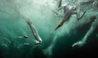 British wildlife photography awards 2012 | A mixed bag - wildlife, food, travel | Scoop.it