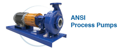 Standard Features of ANSI pumps | Ruhrpumpen | Scoop.it