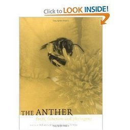 Amazon.com: The Anther: Form, Function and Phylogeny (9780521480635): William G. D'Arcy, Richard C. Keating: Books | Plant Genomics | Scoop.it
