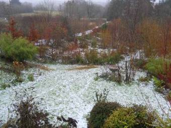 Photos of the Permaculture Gardens and Cottage of Bealtaine in ... | Simple, sustainable living. | Scoop.it