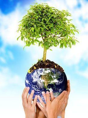 La educación ambiental, y la otra educación | La pupila insomne | Patricia Jourdan | Scoop.it