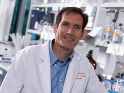 PPMD Awards Dr. Denis Guttridge, The Ohio State University Grant to Support Cardiomyopathy Therapy for Duchenne | Duchenne Muscular Dystrophy Research | Scoop.it