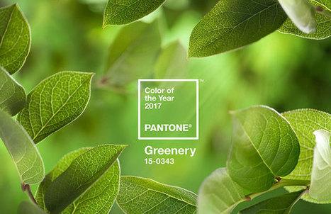 El color Pantone del año 2017 es el Verde GREENERY   Mil Ideas de Decoración   Decoración de interiores   Scoop.it