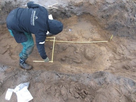 Grave of 12th-century warrior discovered in Finland - Medievalists.net | Neolithic | Scoop.it
