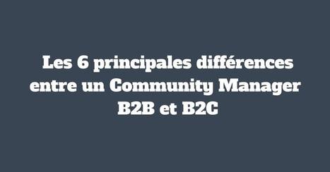 Les 6 principales différences entre un Community Manager B2B et B2C | Institut Pellerin - Formation Réseaux Sociaux Sur Mesure | My project ! | Scoop.it