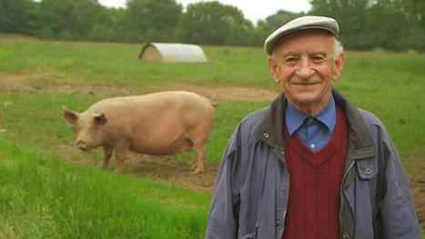 REPLAY: Les travers du porc | Porc Magazine | Scoop.it