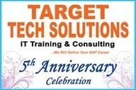Target Tech Solutions | Online SAP Training in All Modules | India | USA | sapsd online training | Scoop.it