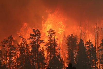 Was 2011 the Year of Mega-Fire? | Cool Green Science: The Conservation Blog of The Nature Conservancy | Sustainable Futures | Scoop.it