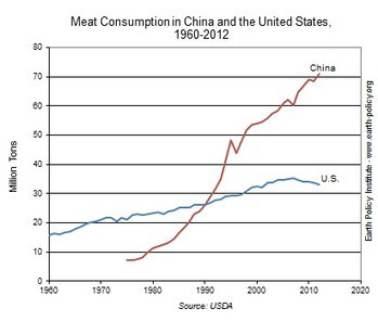 China now eats twice the meat we do | Geography 200 | Scoop.it