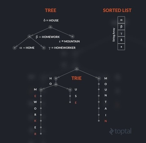 The Trie: A Neglected Data Structure   coding   Scoop.it