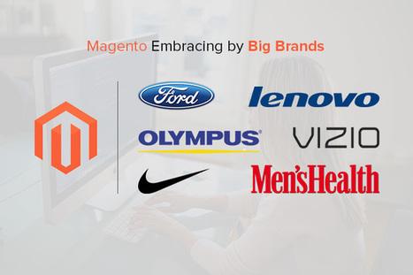 6 reasons Why Magento is best Platform for Ecommerce Startups - Magento tutorial | Magento Design | Scoop.it