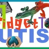 Autism Learning Materials