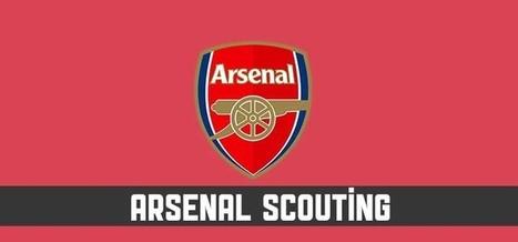Arsenal Fantasy League Analysis - Fantasy Premier League Tips | Fantasy Premier League 2014-15 | Scoop.it