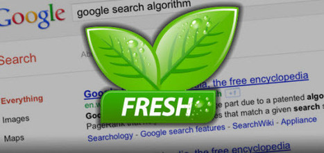 Google Fresh: What Is It, And How Should We React To It? | GooglePlus Expertise | Scoop.it